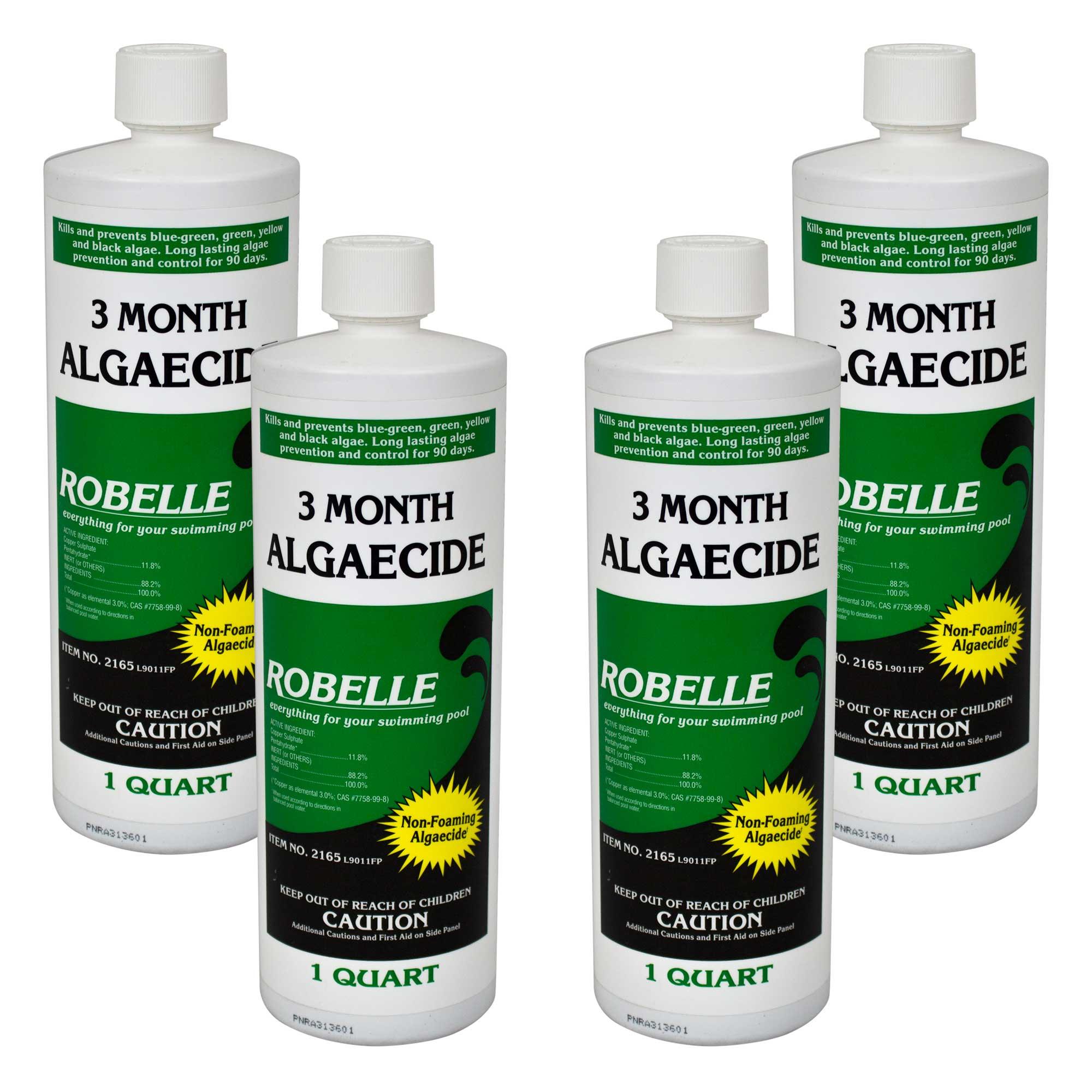 Robelle 3 Month Algaecide