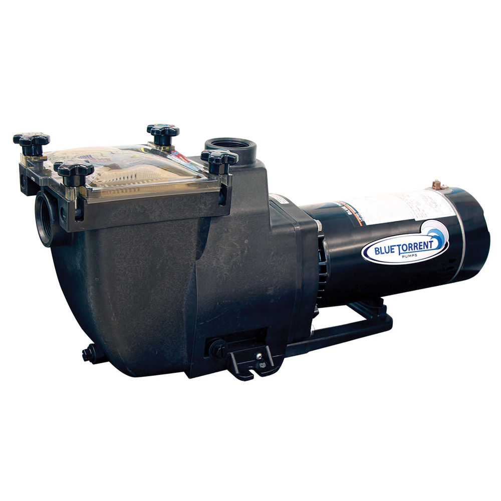 Blue Torrent Swimming Pool Typhoon In Ground Filter Pump 1
